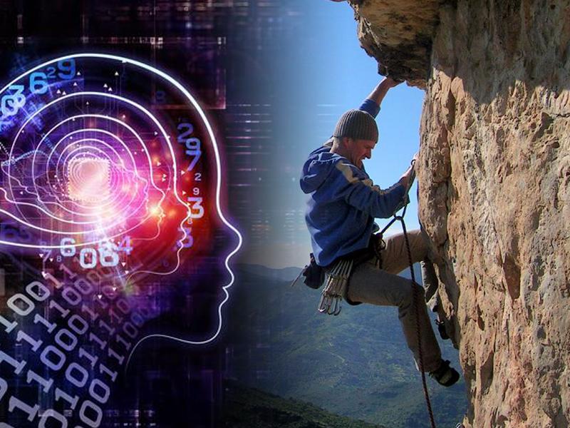 Cómo decide nuestro cerebro si vale la pena esforzarse por una recompensa