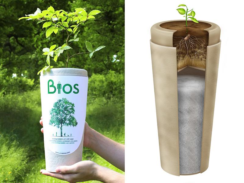 BIOS: Urna Biodegradable que puede convertir tus cenizas en un árbol