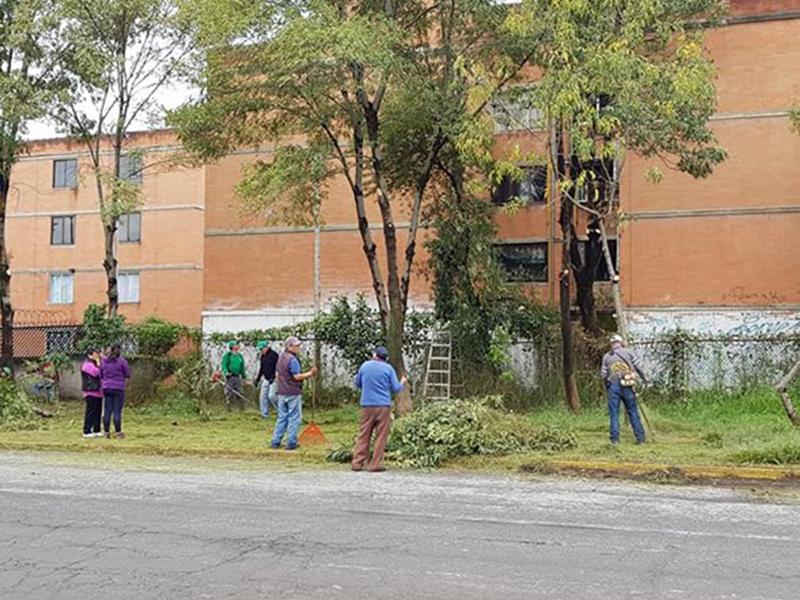 """Los """"Vecinos en Acción"""" mejoran su comunidad"""