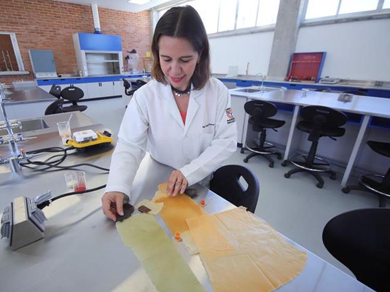 Investigadora mexicana crea plástico biodegradable hecho a base de nopal